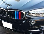 BMW grille insert trim