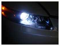 OEM HID Bulbs Replacement