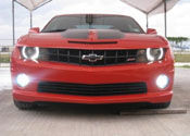 Fog Light Replacements